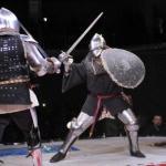 profesjonalne walki rycerskie